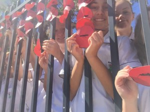 Students place poppies